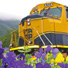 ARR locomotive with flowers.