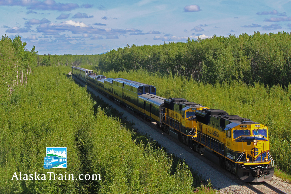 Best Alaska Railroad Dome Train Class of Service ...
